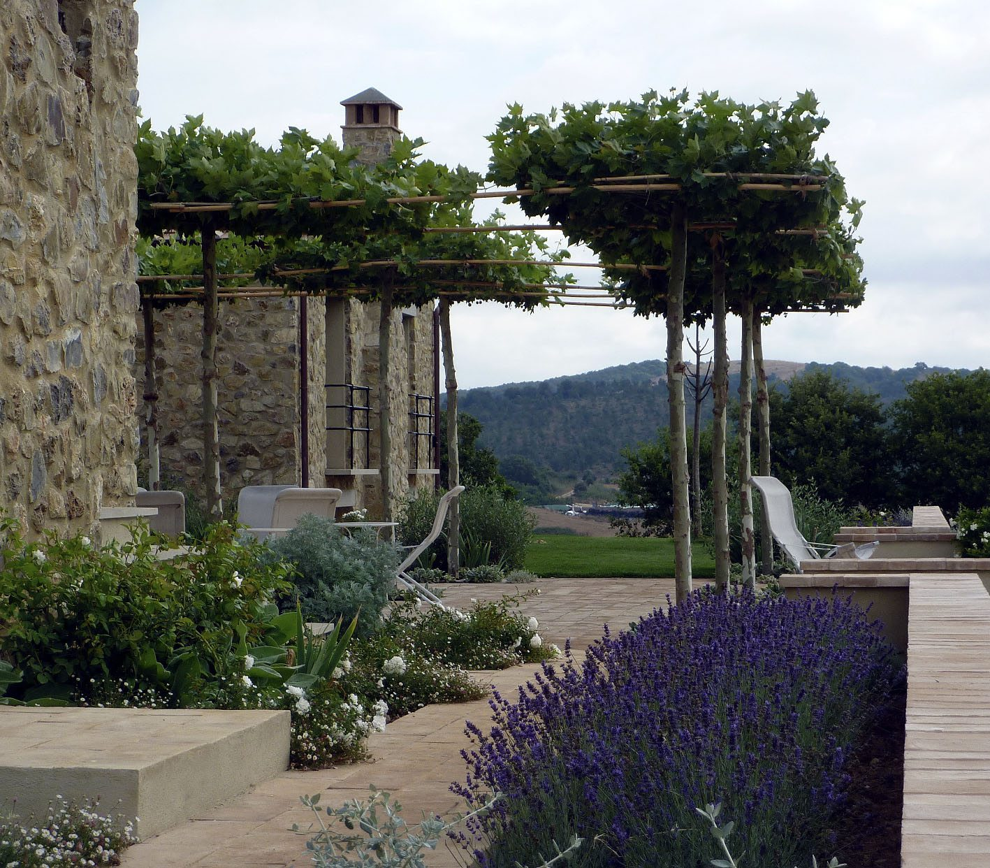 A garden in Tuscany with del Buono Gazerwitz Ltd.