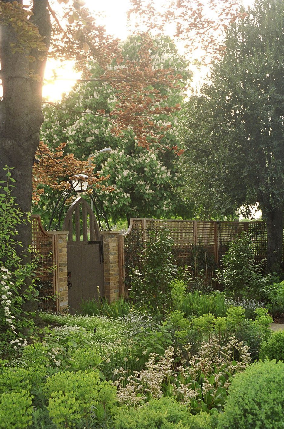 A garden with del Buono Gazerwitz Ltd.